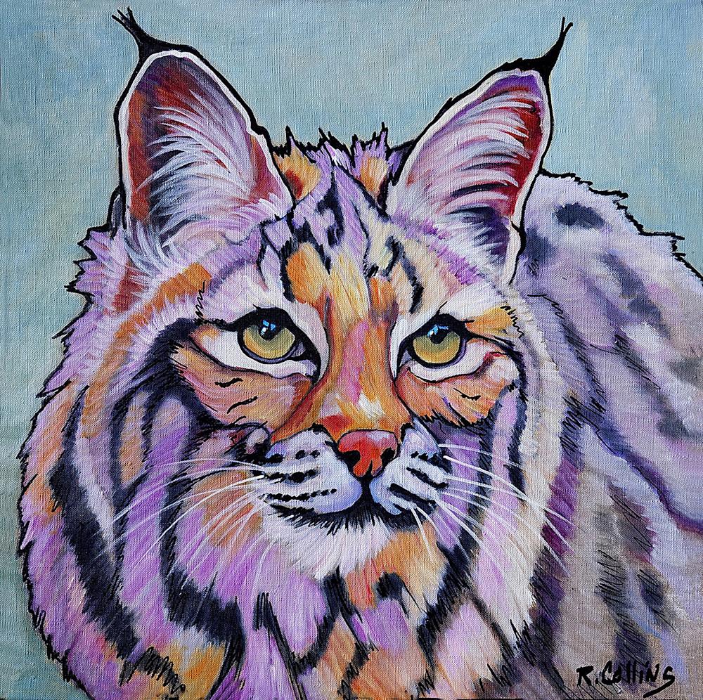 """Lynx """"pretty boy"""" Rufus"""