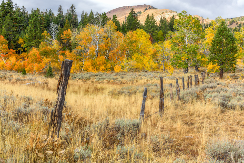 Red Lake Peak with aspen and fenceline