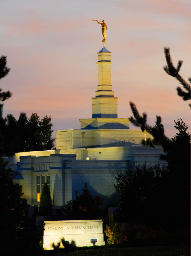 Edmonton Temple - Pink Sky