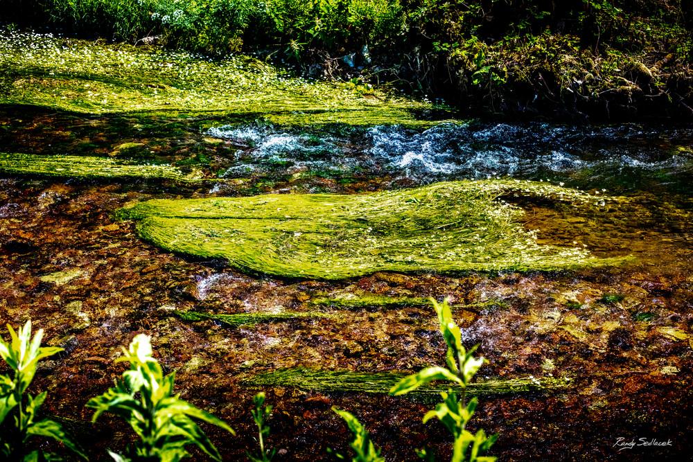 Blarney Water| Randy Sedlacek Photography