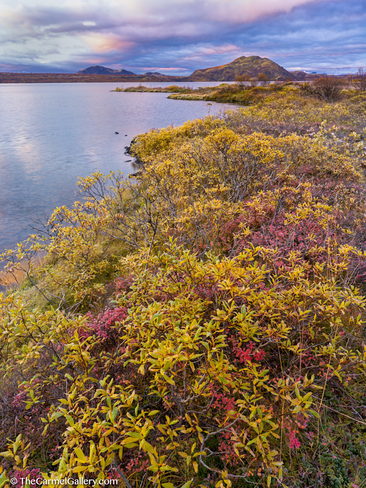 Iceland Sunrise Art | The Carmel Gallery
