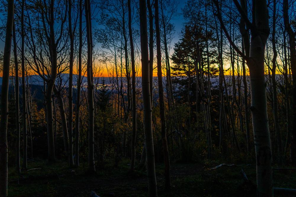 Aspens, Autumn, Landscape, New Mexico, Photography, Sangre de Christo mountains, Santa Fe, Southwest, forest