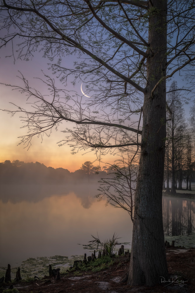 Mists of the Crescent Moon Fine Art Photograph