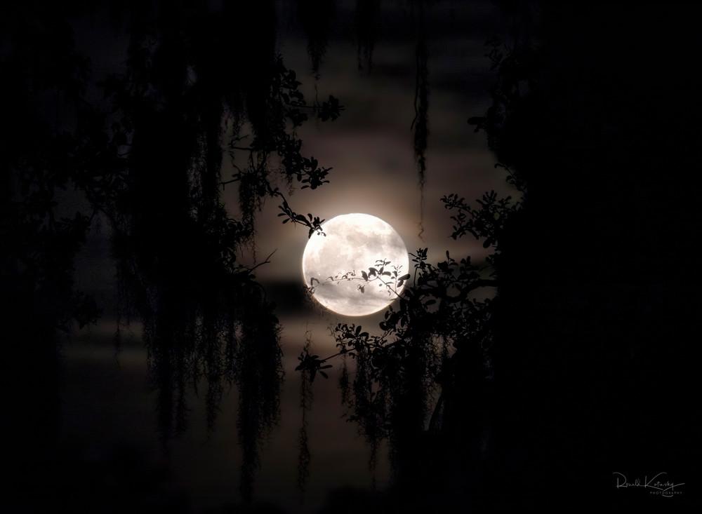 The Hunter's Moon Fine Art Photograph