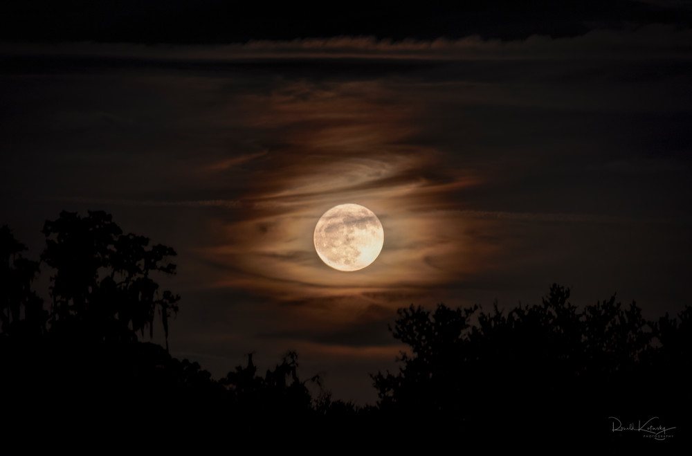 Hunter's October Moon Fine Art Photograph