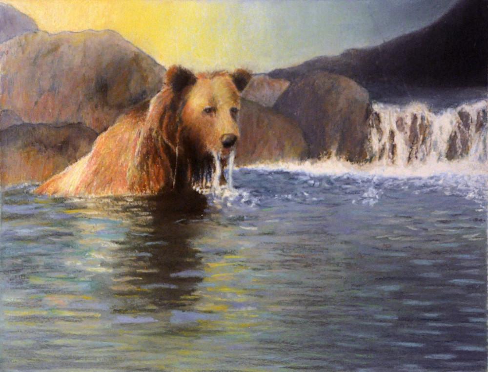 The Bear Takes a Dip