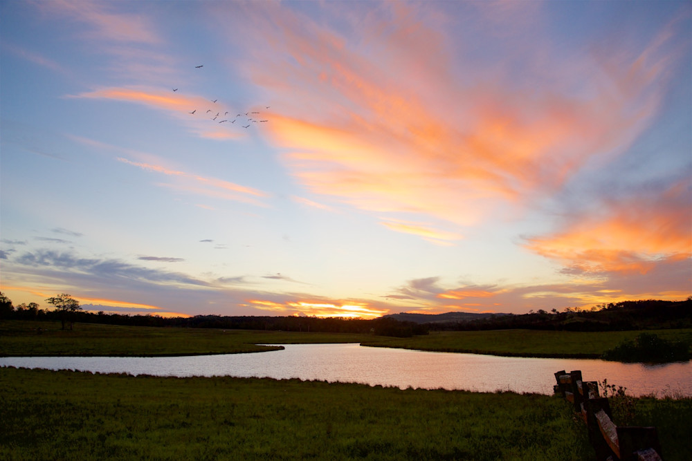 Tocal Delight - Tocal Homestead Hunter Valley Australia } Sunset