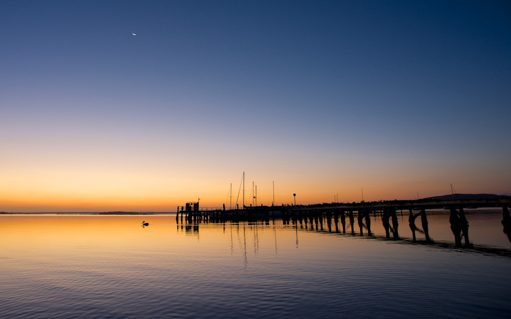 Peaceful Pelican - Soldiers Point Port Stephens NSW Australia | Sunset