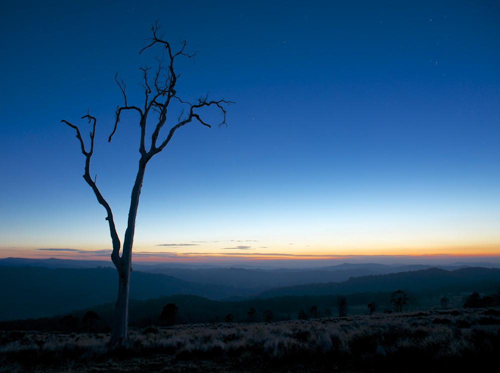 Lone Tree - Boonabilla Rd Carrabolla Paterson Hunter Valley NSW Australia | Dawn Sunrise Limited Edition