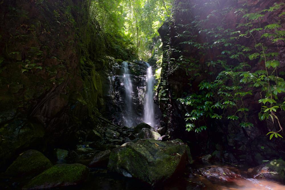 Green With Envy - Box Log Falls Waterfall Lamington National Park Qld Australia | Waterfall