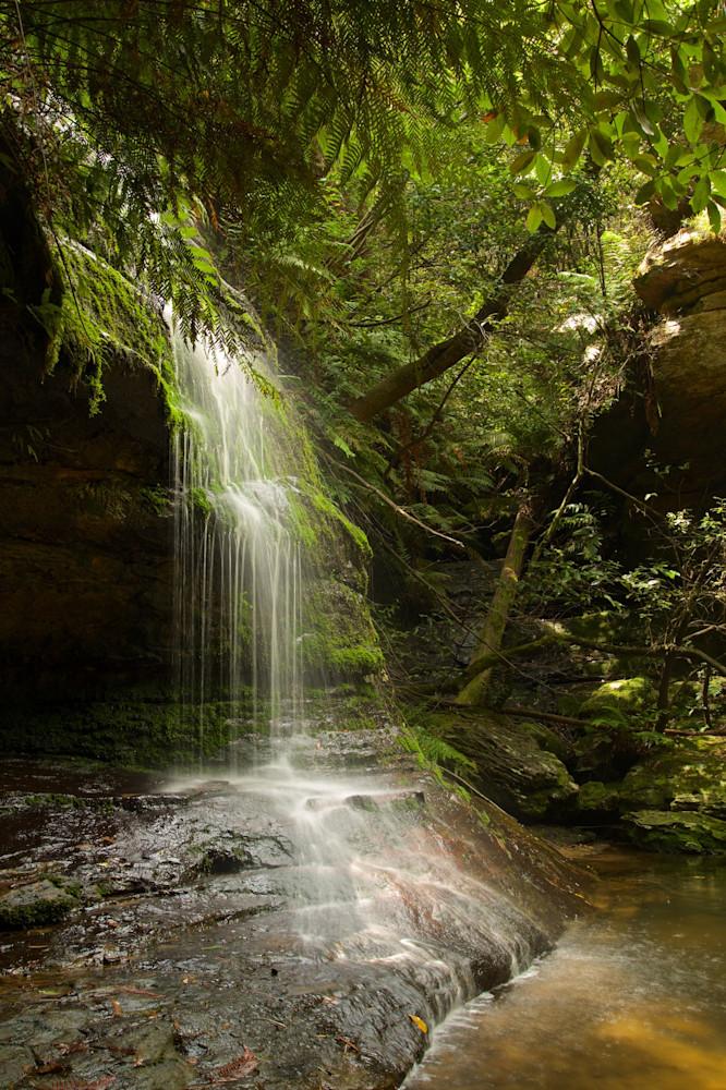 Green Veil - Leura Blue Mountains National Park NSW Australia   Watefall