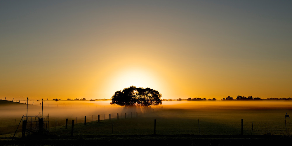 Bolwarra Golden Morning - Maitland Hunter Valley NSW Australia | Sunrise