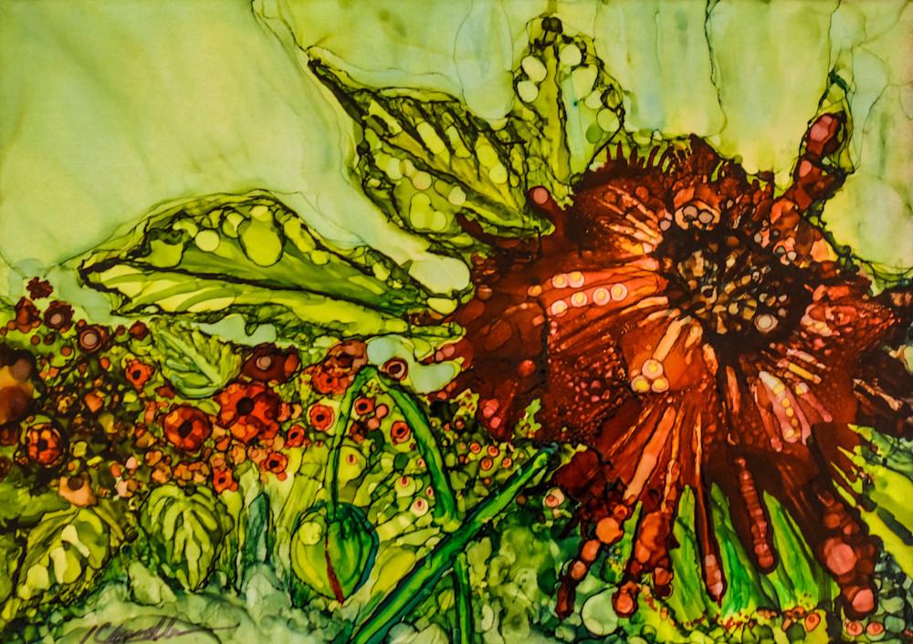 Poppy, flower, field, remembrance