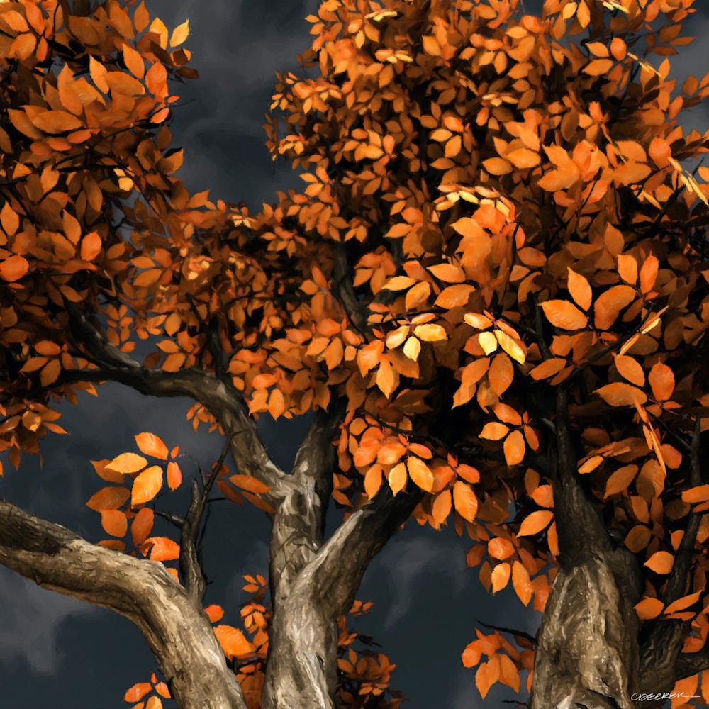 Autumn Storm | Cynthia Decker