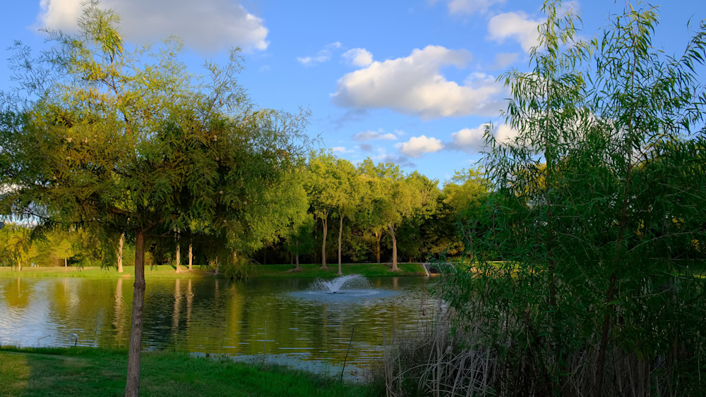 Summer Afternoon by the Pond
