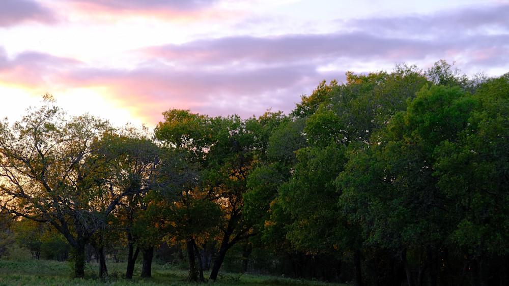 Texas Sunset Over Treeline
