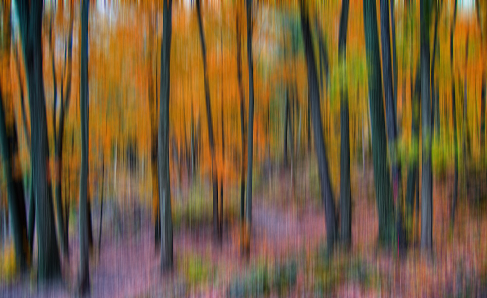 Fine Art Photography Abstract Colors