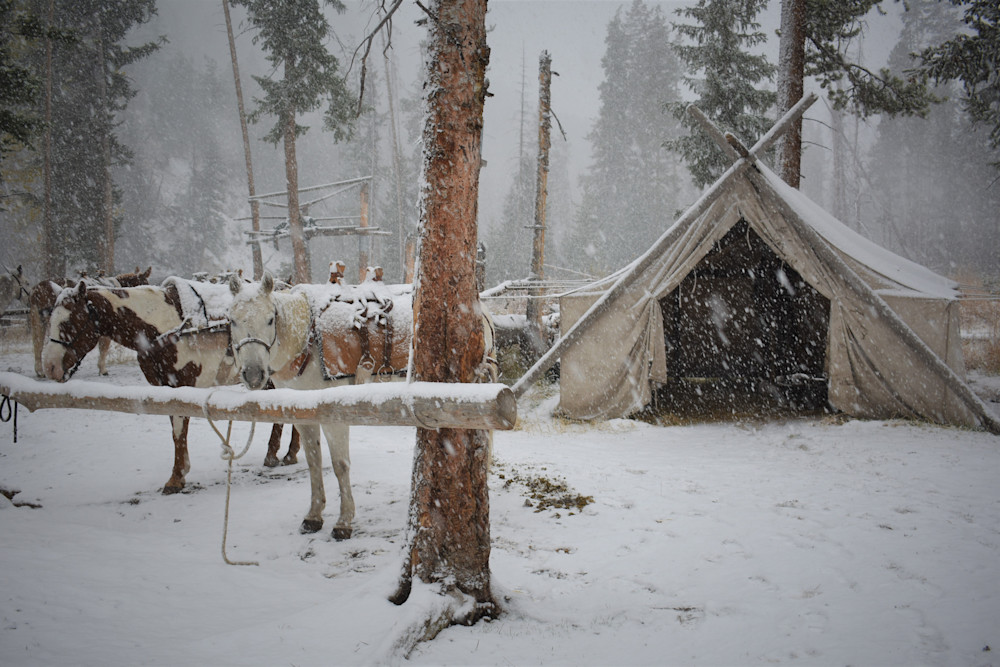 Photograph of pack horses at the hitching rail on a wintery day for sale as Fine Art