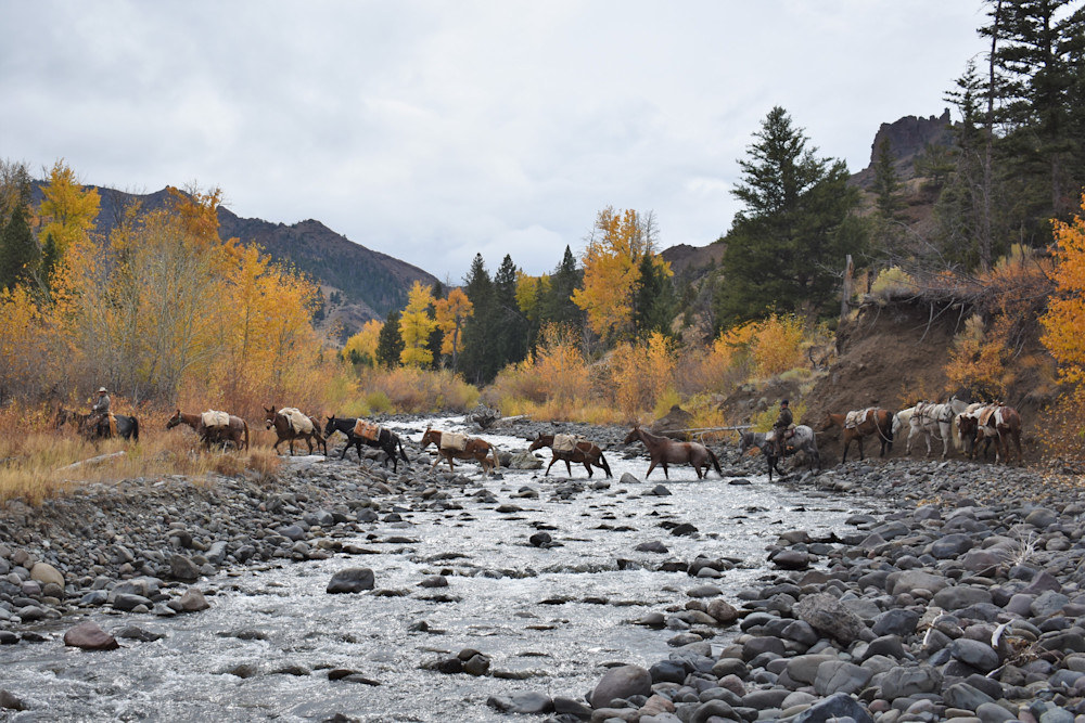Photograph of pack strings crossing a river for sale as Fine Art