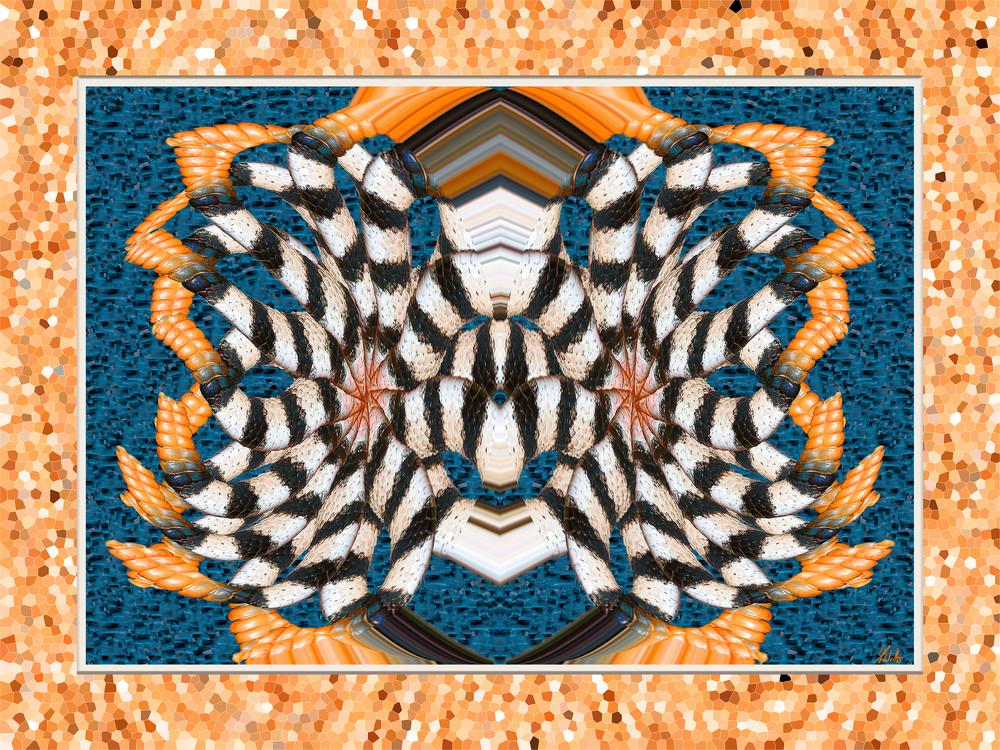 Western Diamondback Butterfly print of rattlesnake tail transformed into digital art for sale by Maureen Wilks