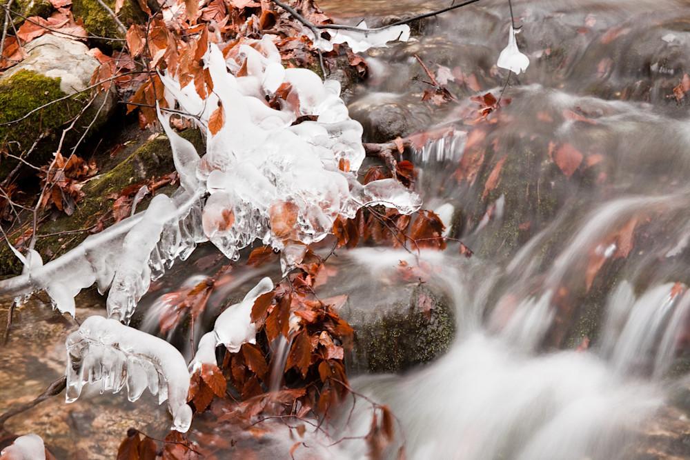 Batten Kill Feeder Creek In Autumn Photography Art | David N . Braun Photography