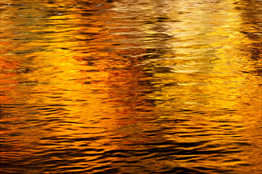 Golden Reflection