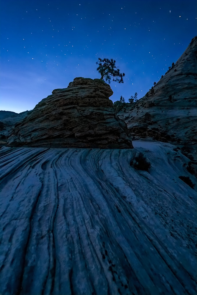 Zion under the night sky