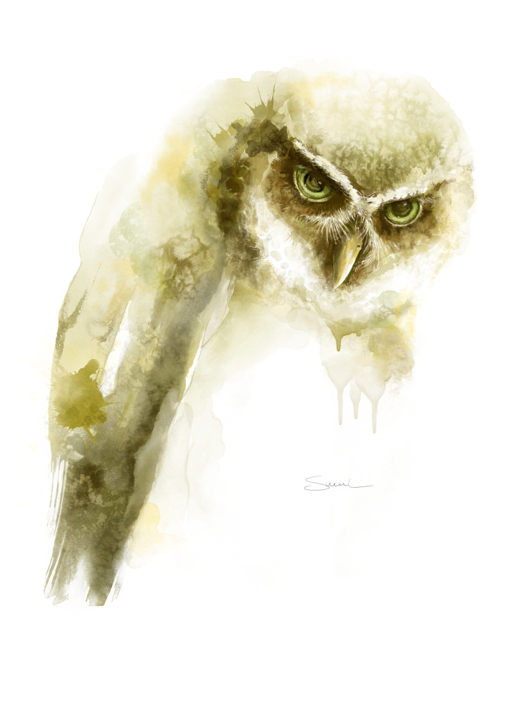 Beautiful Watercolor Spectacled Owl
