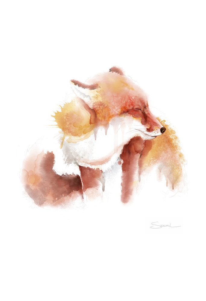 Sleepy Winter Fox Watercolor Art