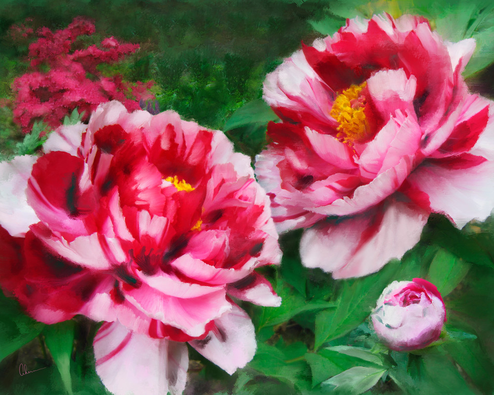 Fire Flame Peonies metal wall art. Aluminum Prints by the artist, Mary Ahern.