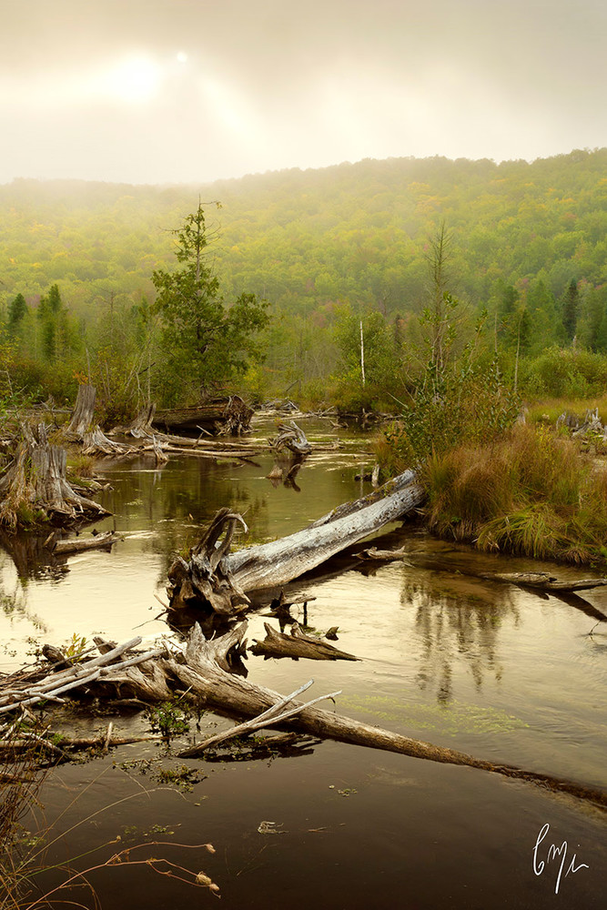 Constance Mier fine art Photography - Michigan's scenic rivers