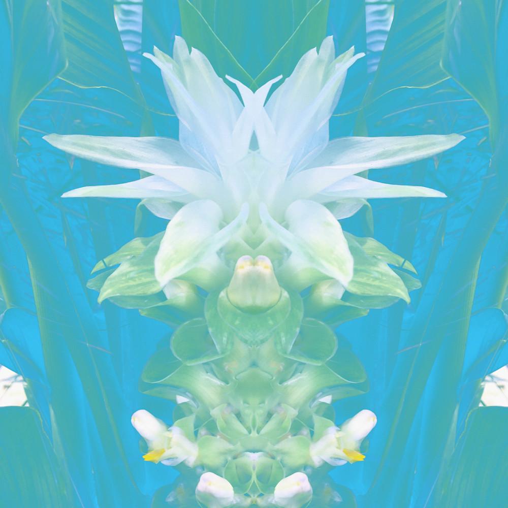 White Maiden Art | SkotoArt