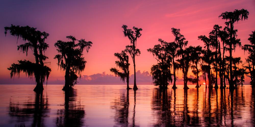 Sunrise swamp colorful sunrise photography