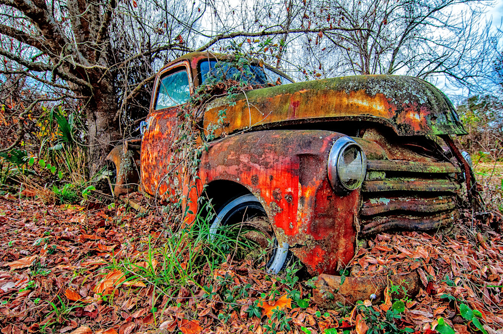 1950 Chevrolet antique truck photo