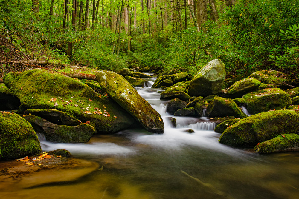Smoky Mountains stream photography