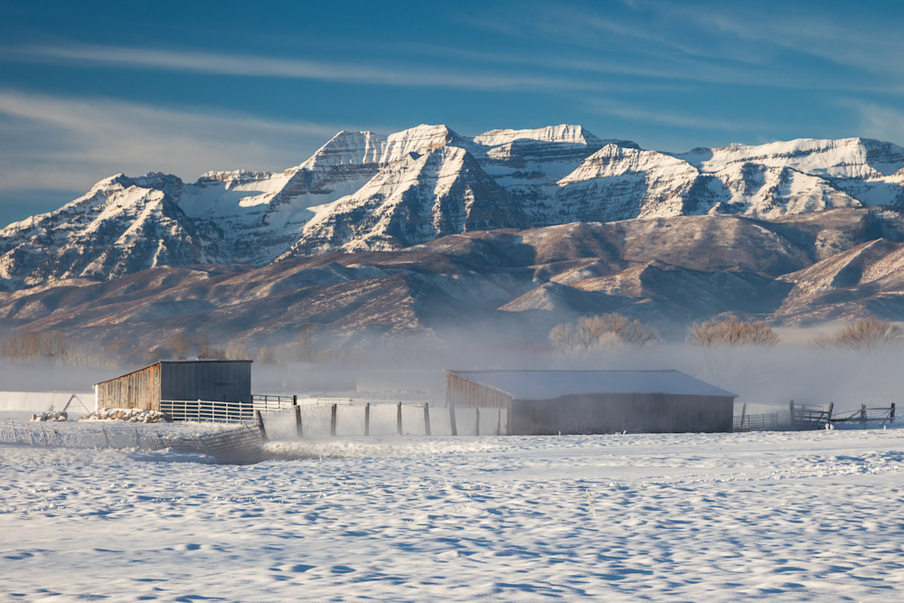 frosty barns with timp
