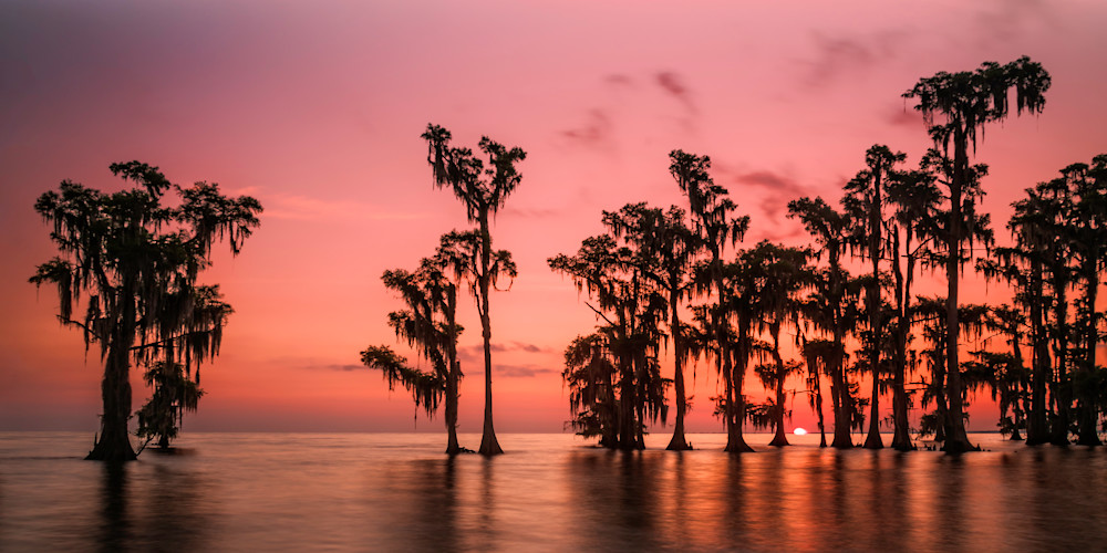 Lake Maurepas swamp sunrise photography