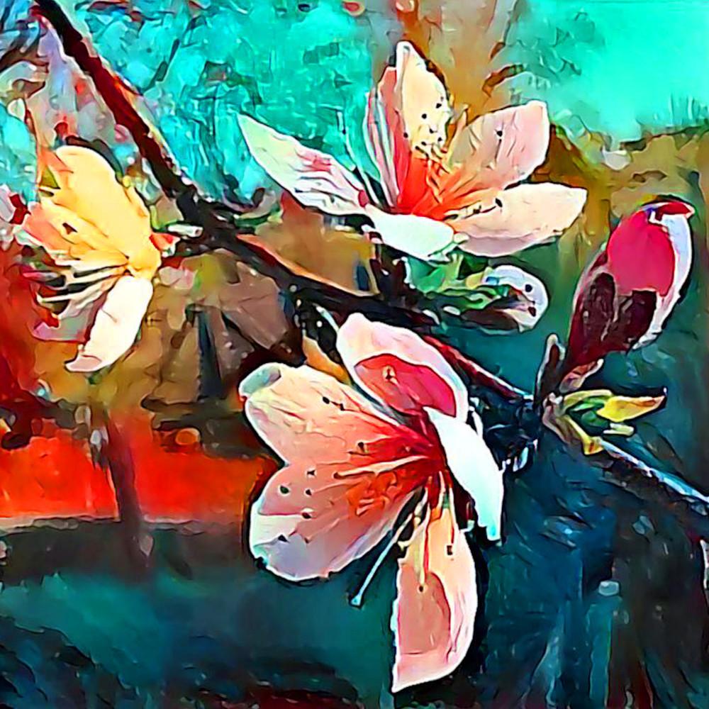Peach Blossoms Art | SkotoArt