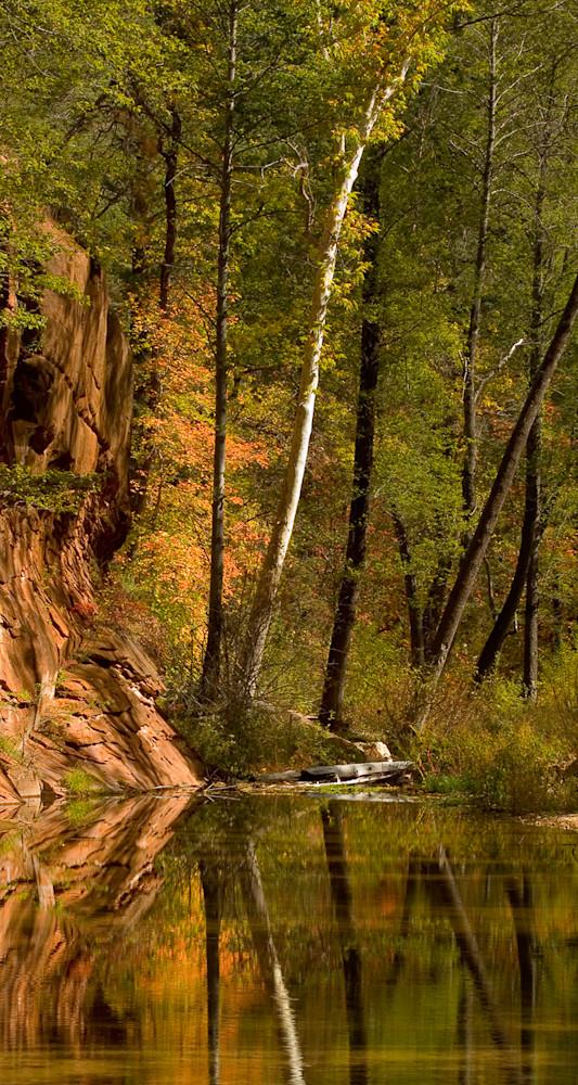 Westfork Trail Pano Photo Print