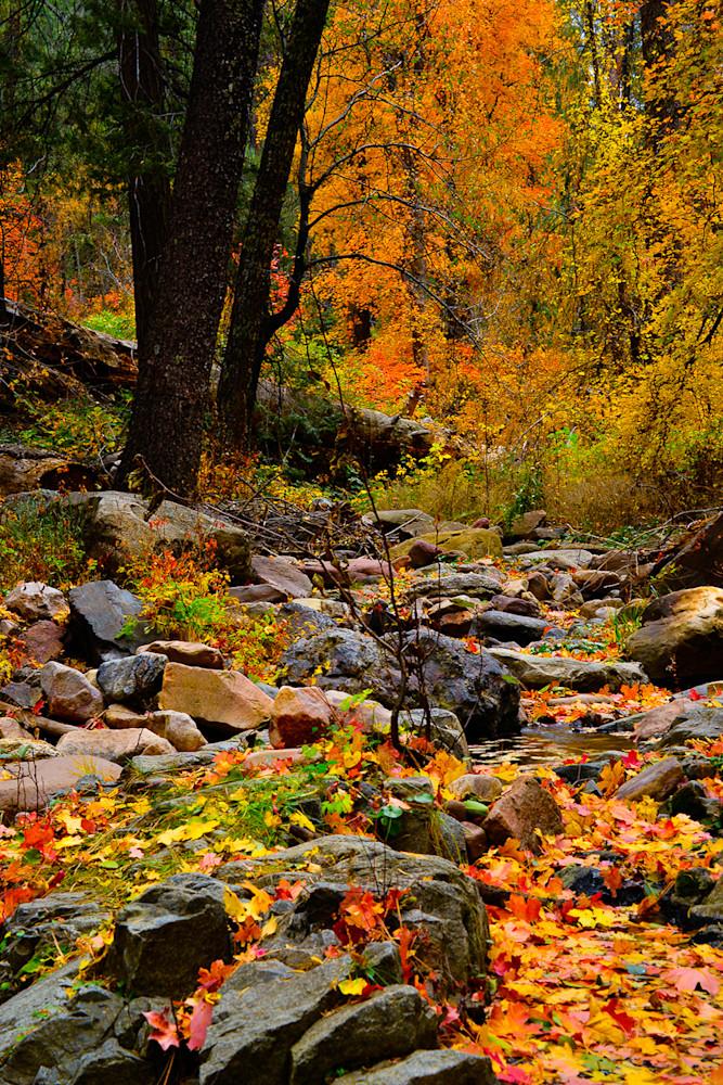 Workmans Creek