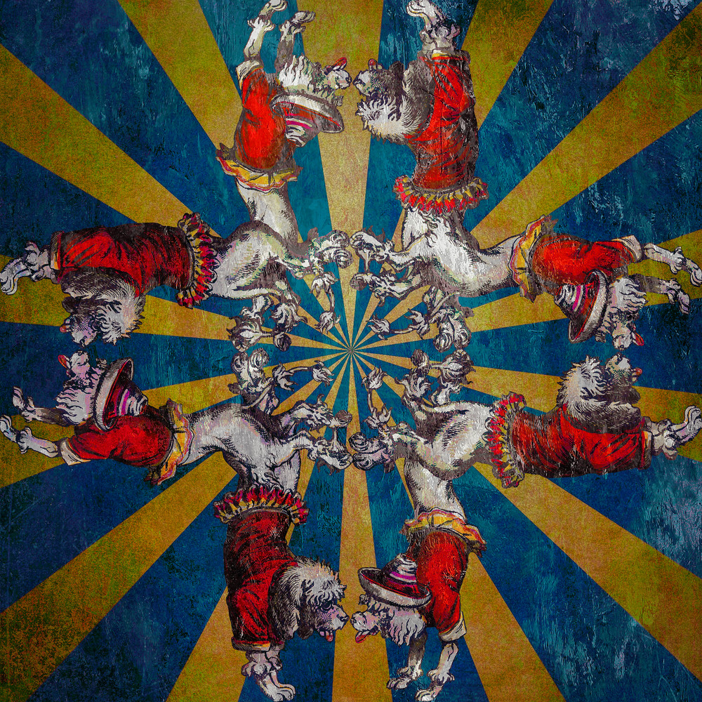 Circus Dogs Art | SkotoArt