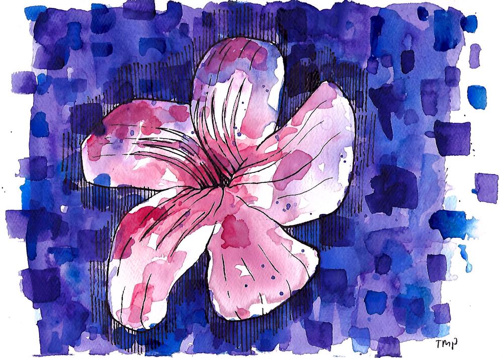 Matt Pierson Artworks | Magenta Flower