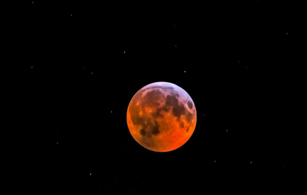 Wolf Blood Moon 2019