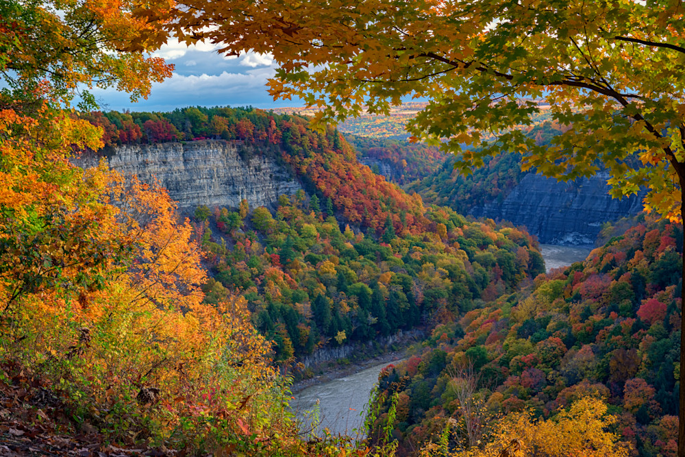 Autumn on the Genesee II by Rick Berk