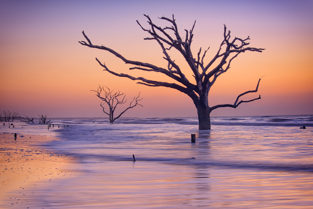 Morning at Botany Bay Plantation by Rick Berk