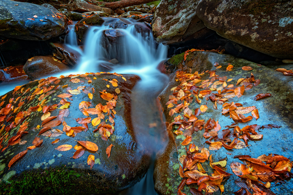 Autumn Cascade in the Smokies by Rick Berk