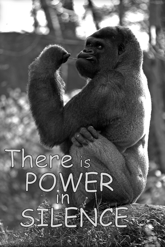 There Is Power In Silence Photography Art | Robert Jones Photography