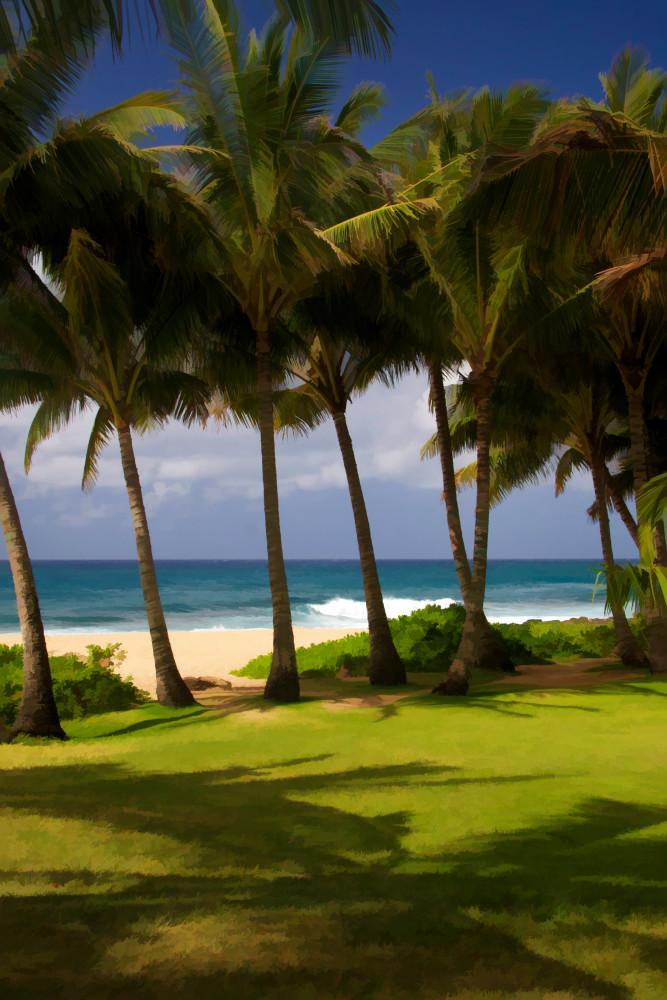 Impressions of Maui