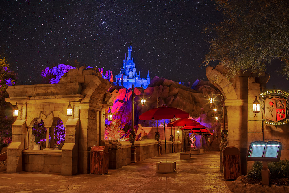 Beast's Castle 2 - Disney Framed Art | William Drew Photography
