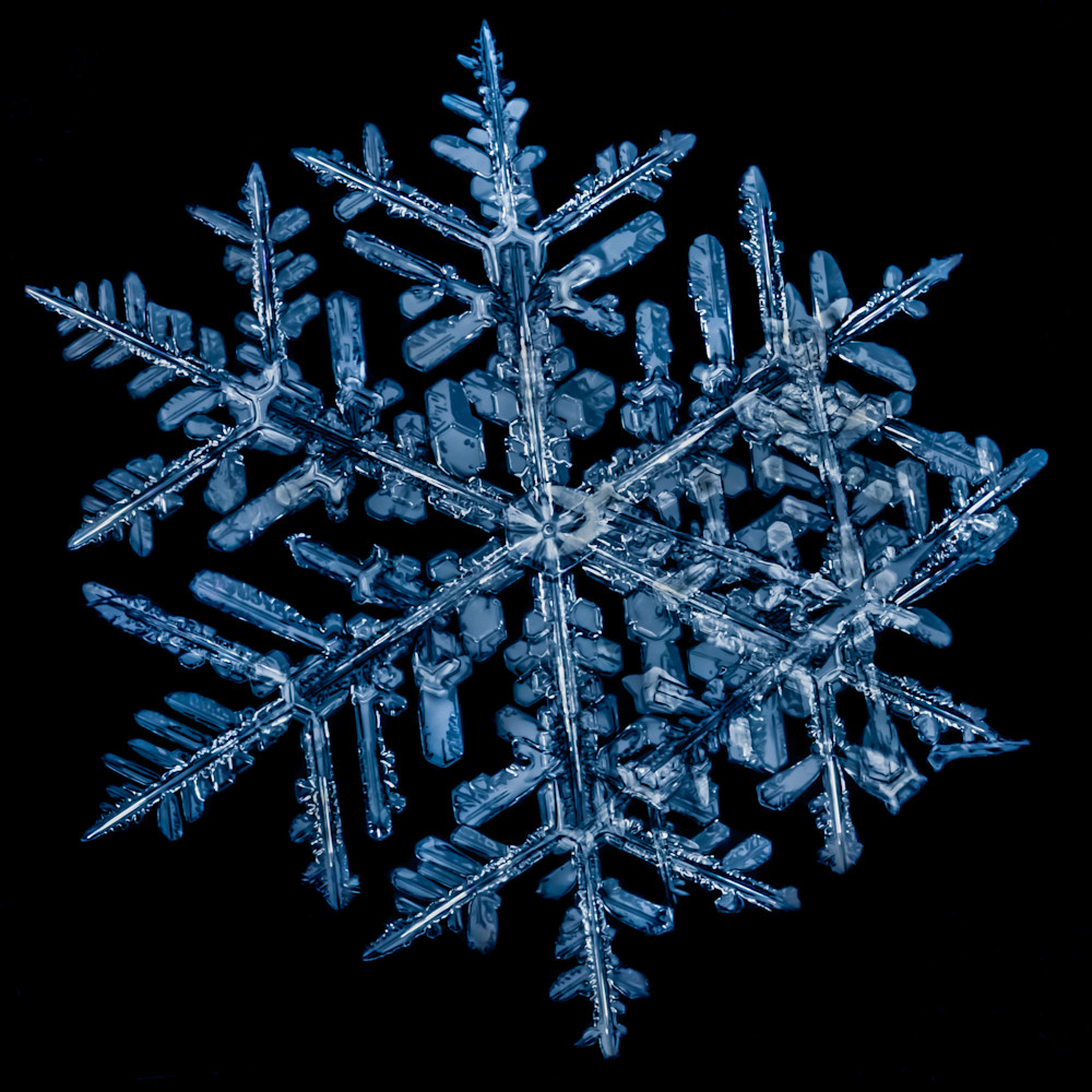 Colorado Snowflake Photography Art | Kirk Fry Photography, LLC